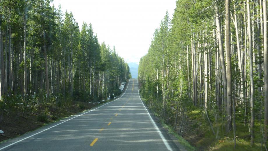 vanuit Yellowstone naar Grand Teton